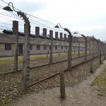 Electric fence at the main gate