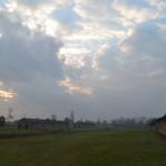 The vastness of Birkenau