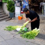 Celery!
