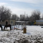 Snowy stables