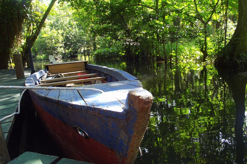 A docked row boat in the jungles of Guatemala