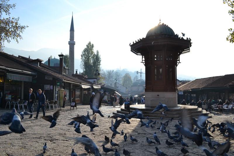 Pigeons take off near the Baščaršija, Sarajevo